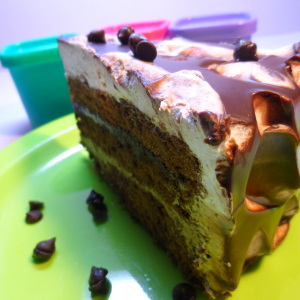 chocolate trifle cake recipe